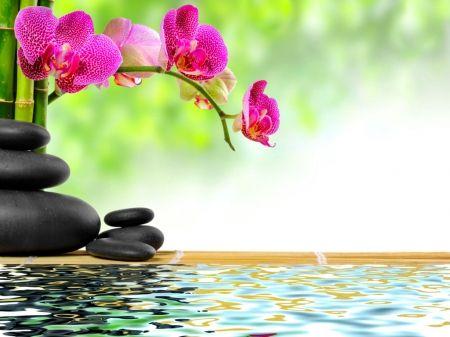 clases meditacion en algeciras